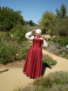 The Lady Adventurer » Brown Wool Gown Diary